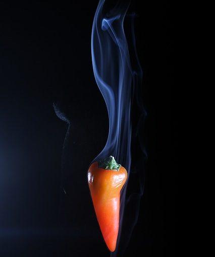Mexican Smoked Chili Marinade Recipe